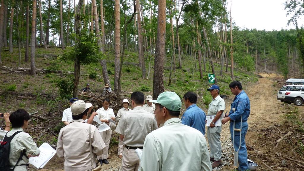 28,7,25県委員会調査:富県間伐林